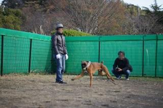 kangei121906.jpg