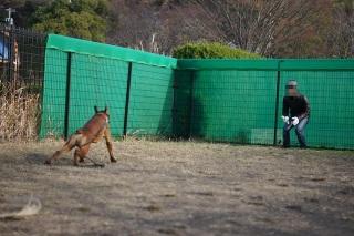 kangei121905.jpg