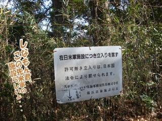yamanami003.jpg